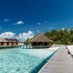 MLE_Tropical-Beach-with-Water-Bungalows_519815515