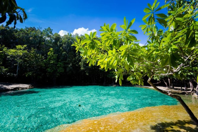 Emerald Pool Krabi Krabi Travel Guide