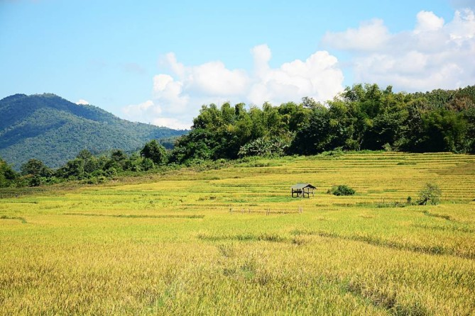 the living land company Luang Prabang Travel Guide