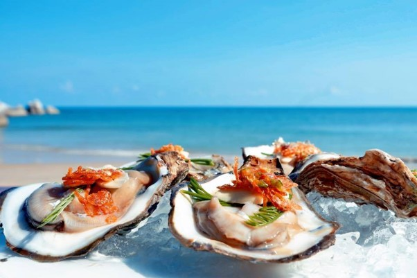 Where To Eat In Koh Samui: Top Beachfront Restaurants With Stunning Views Of The Sea